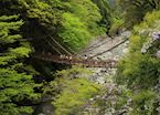 Iya Valley Vine Bridges, Tokushima