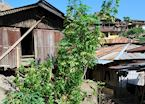 Village houses, Wolotopo near Ende