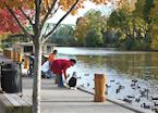 Feeding the ducks, Rochester