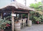 Coffee Plantation in Kona, Hawaii (Big Island)