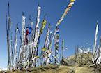 Prayer flags above the Phobjikha valley, Bhutan