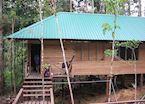 Ginseng Camp