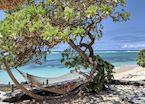 Beach hammock, Mauritius
