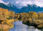 Angling in the Paradise Valley near Bozeman, Montana