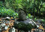 Taaoa archaeological site, Hiva Oa