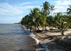 Coastal Belize