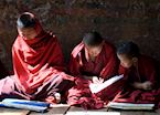 Monks studying, Punakha