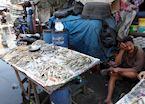 Jakarta fish market