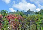 Te Rua Manga (The Needle) on Rarotonga