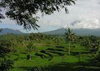Volcano view, Yogyakarta, Java, Indonesia