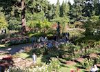 The International Rose Test Garden, Portland