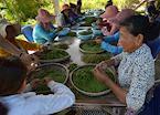 La Plantation, Kampot