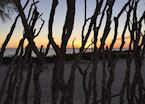 View of the beach through the fence in Tulear