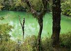 Laguna Verde, Puerto Varas