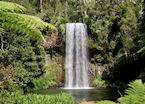 Atherton Tableland, Millaa Millaa Waterfall, Queensland, Australia