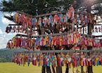 Shrine in Pai