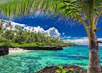 Upolu Coral Reef