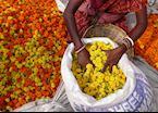 Flower market, Calcutta