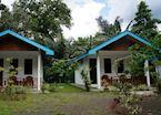 Tangkoko Hill