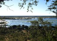 View over Chobe National Park