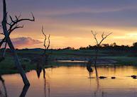 Sun-downers with the hippos on Lake Kariba