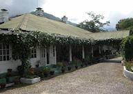 Glenburn Tea Estate nr Darjeeling