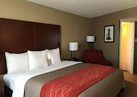Comfort Inn Downtown, Memphis