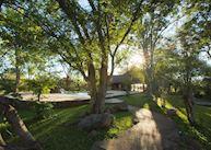 Masuwe's shaded gardens