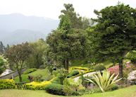 Gardens, Silver Oaks, Kalimpong