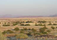 Rhino Camp, Damaraland