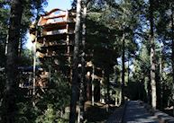 Nothofagus Hotel and Spa and Montana Magica