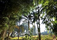 Ceylon Tea Trails, Norwood Bungalow, Hatton