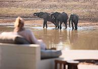 Watching elephants from Chinzombo Camp, South Luangwa National Park