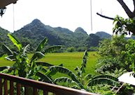 View of rice paddies at Tam Coc Garden