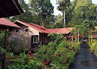 Chalets, Abai Jungle Lodge