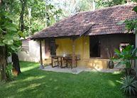 Hibiscus Cottage Garden