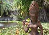 Botanical Gardens, Nevis