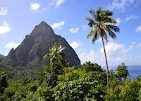 Piton, Saint Lucia