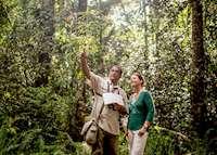 Nature Walk, The Datai , Langkawi