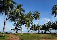 Palm Trees, Avani Kalutara, Kalutara