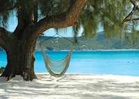 Beach Hammock, White Bay Beach, Guana Island, Guana Island
