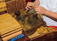 Little Havana cigar craftsman