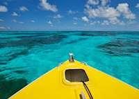Boat trip, Bird Island Lodge , Bird Island