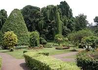 Botanical gardens, Kandy, Sri Lanka