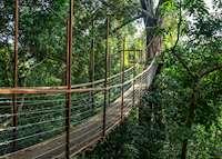The Datai Langkawi - Canopy Walk