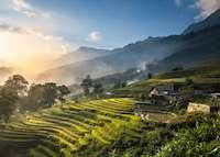 Rice terraces, Munduk