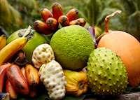 Orchard fruit, Guana Island, Guana Island