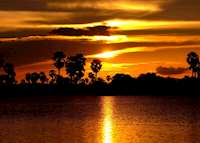 Sunset in Selous Game Reserve, Tanzania