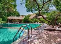 Pool, Jungle Beach