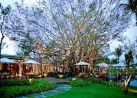 Ficus Restaurant, The Sarojin. Khao Lak